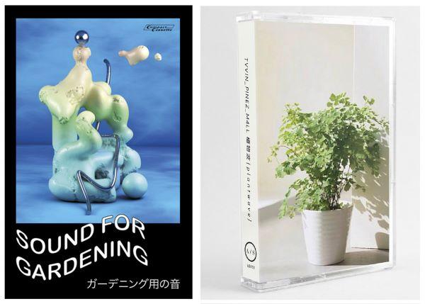 Gardening y plantwave