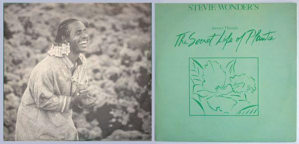 Stevie se parte la caja